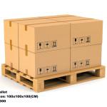 Cargo on Pallet
